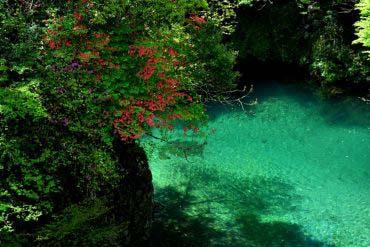 Sông Niyodo