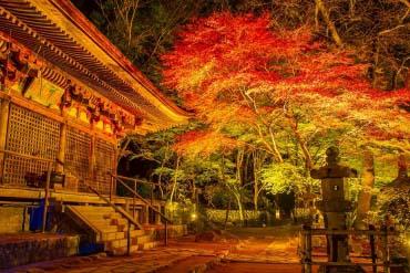 Muroji Temple(Nara)