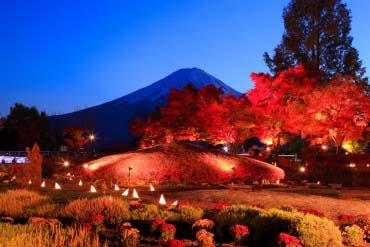 Fujikawaguchiko Autumn Leaves Festival(Mt. Fuji)