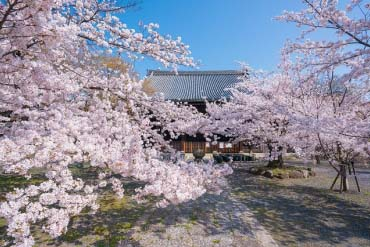 Ryuhon-ji Temple
