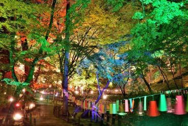 京之七夕(京都)