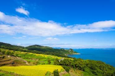 Teshima Island(Kagawa)