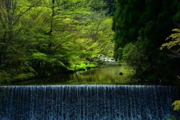 Niyodo River(Kochi)