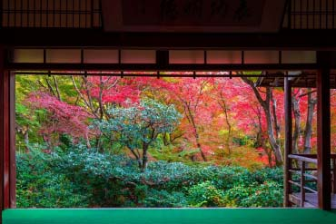 直指庵(京都)