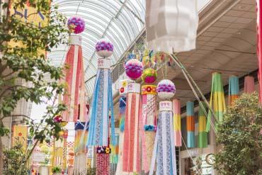 Sendai Tanabata Festival(Sendai & Matsushima)