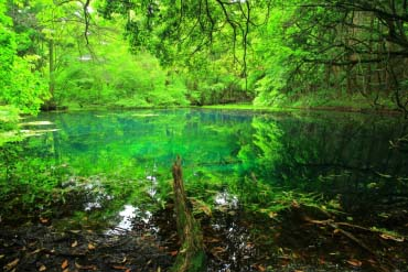 Maruike Pond(Yamagata)