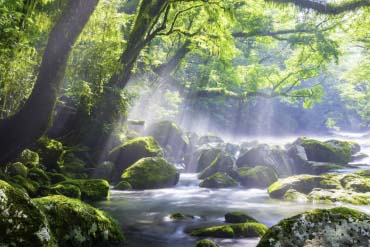 Kikuchi Valley(Kumamoto)