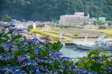 Shimoda Park(Shizuoka)