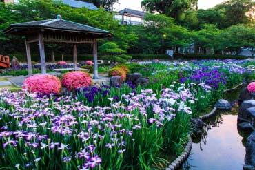 大村公園(長崎)