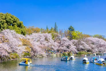 Công viên Inokashira