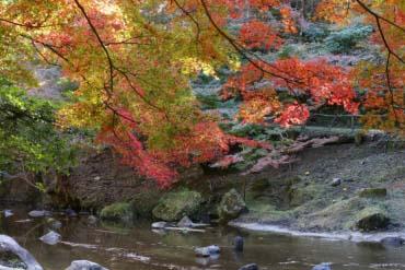 Công viên Iwayado(Aichi)