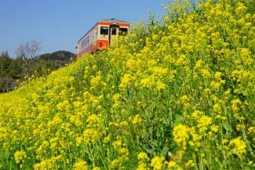 Isumi Railway(Chiba)