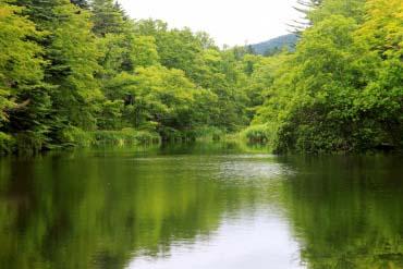 Kolam Kumoba (Karuizawa)