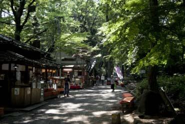 Jindaiji Temple / Kuil Jindaiji