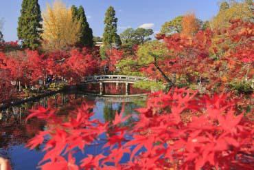 Eikando(Kyoto)