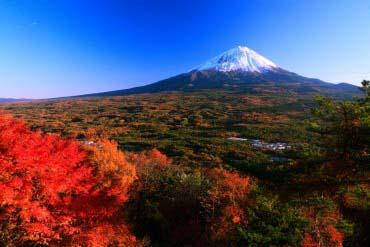 紅葉台(富士山)