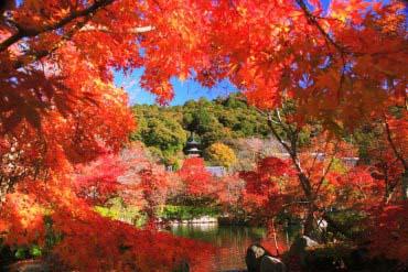 永観堂(京都)