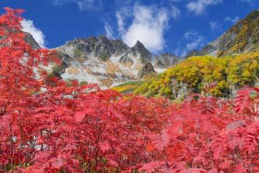 Mount Karasawadake(Gifu)