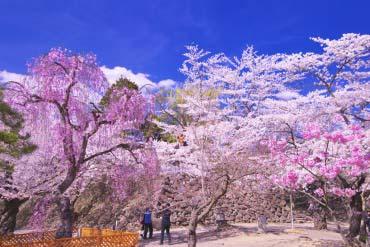 Kaiko-en Park