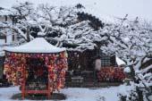 Yasaka Koshindo Temple