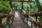 Kazura bridge(Okusotani)