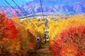 Hunter Mountain Shiobara