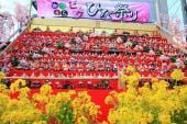 Lễ hội búp bê Katsuura
