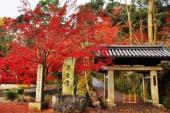 Đền Koushou