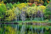 Hồ Kidoike