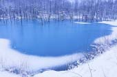 Hồ Aoi