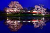 Kominato Railway