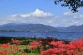 Katsurahama Park