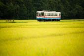 Hitachinaka seaside railway