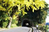 Yabakei Gorge, Ao-no-domon (Tunnel)
