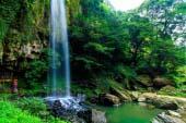 裏見瀑布自然花苑