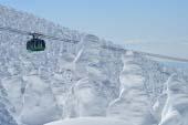 蔵王樹氷群