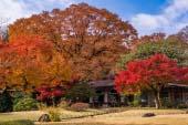 小石川后乐园