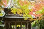 Eigenji Temple