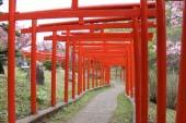 Đền Takayama Inari