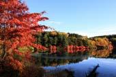Ao của Shirakaba