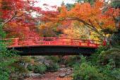 红叶谷公园