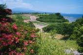 Ariake Sea