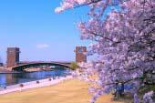 富岩运河环水公园