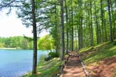 Daizahoshi Pond