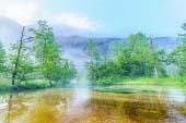 Hồ Tashiro