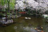 Utsubuki Park