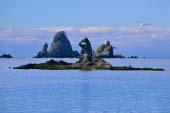 Bờ biển Otago