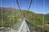 Tanize Suspension Bridge